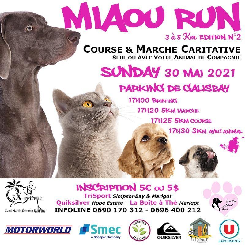 Miaou Run