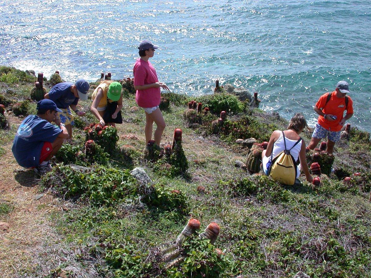 Guana Bay Hiking Tour